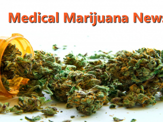 Medical-Marijuana-News-Header